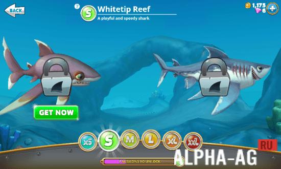 скачать игру акула взломанную на деньги